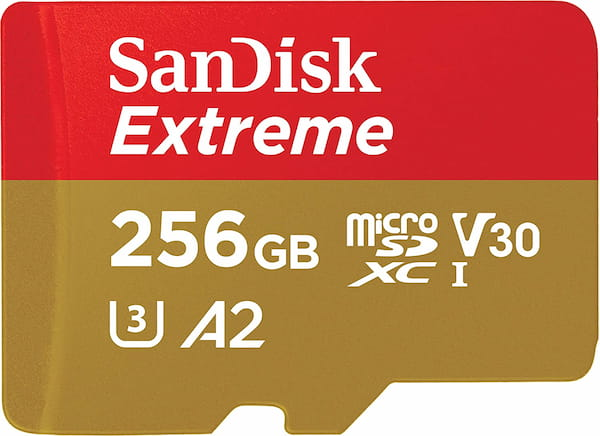 Sandisk Extreme 256GB SD Card for GoPro Hero 8